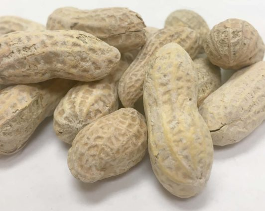 Ball Park Peanuts with Salt